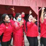 PDIP Pecat Anggota DPRD Samosir, Romauli Panggabean