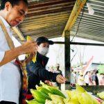 Papua Dimata Jokowi